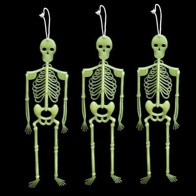 New Halloween Jointed Skeleton Assorted (90cm) Halloween Dress Party Accessories