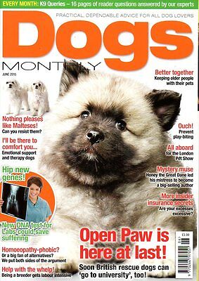 Dogs Monthly Magazine June 2015 MALTESE HY HANNA K9 QUERIES