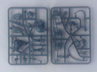 warhammer AoS Khorne Bloodbound skarr bloodwrath new on sprue