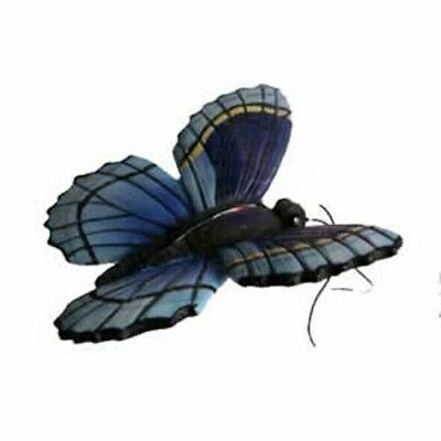 GOLD-CC52035-Blue Butterfly