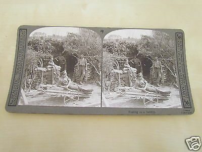 Ww1 Stereoview - Resting In A Battery