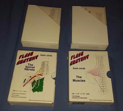 2 Bryan Edwards Flash Anatomy Flash Cards The Muscles the Spinal Nerves