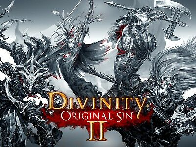 Divinity Original Sin 2 - PC - Region Free - Fast Delivery - Cheapest Price
