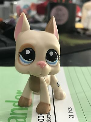 #1647 Littlest Pet Shop LPS Great Dane Dog Puppy Pink Ear Brown Patches Spotted