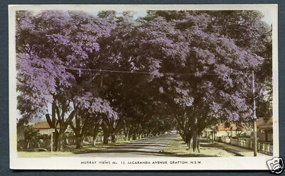 Australia, Nsw,grafton,jacaranda Avenue,un,murray Views  Rp No.13