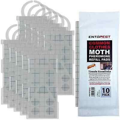 Entopest 10 x Clear Moth Trap Holders & 10 x Clothes Moth Pheromone Glue Boards