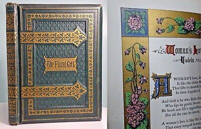 1877 The Floral Gift ILLUMINATED MANUSCRIPT Gilded Antique Book ILLUSTRATED!