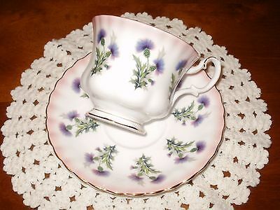 ROYAL ALBERT PURPLE THISTLE Pink Rainbow Band TEACUP & SAUCER 4466 Bone China