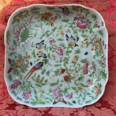 ANTIQUE 19th C. CHINESE EXPORT CELADON FAMILLE ROSE SERVING DISH /PLATE /CHARGER