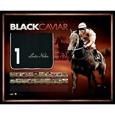 Black Caviar Signed And Framed Record Breaker Saddlecloth Luke Nolen Limited