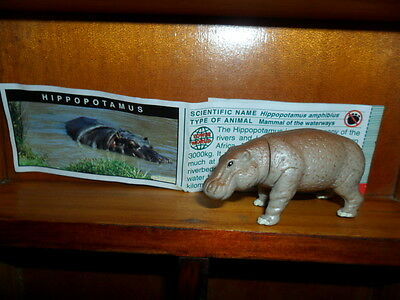 Yowies Series 5, * HIPPOPOTAMUS * + PAPERS