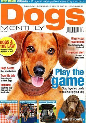Dogs Monthly Magazine June 2014 STANDARD POODLES TRAVELLING WITH DOGS