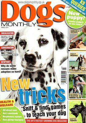 Dogs Monthly Magazine April 2014 AFGHAN HOUNDS WHEN DOGS BITE GROOMING