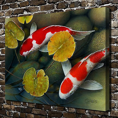 Lotus pond koi Animals Paintings HD Print on Canvas Home Decor Wall Art Pictures