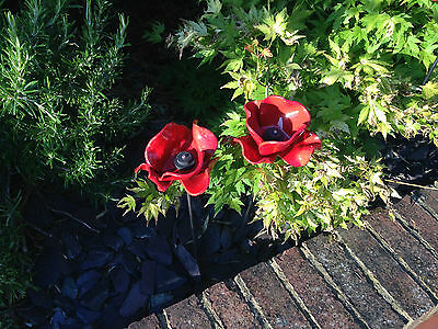 Red Ceramic Poppy
