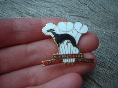 old vintage  enamel  the Whippet club of Wales dog badge lapel pin