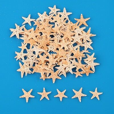 100pcs Mini Cute Flat Starfish Sea Star Shells Beach Wedding Party Decor Crafts