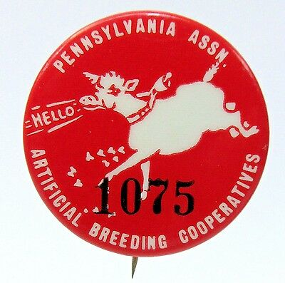 1930's PENNSYLVANIA ASSN. ARTIFICIAL BREEDING COOPERATIVES pinback button *