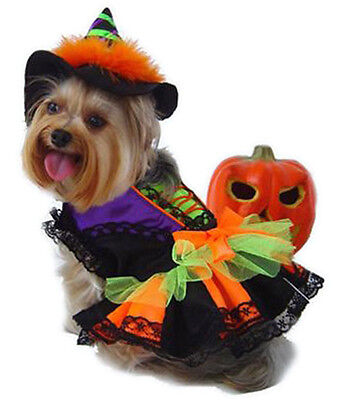 Witch dog's costume