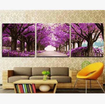 Set of Three 40*50cm Painting By Number Kit F3P031 HOME DECOR S3 AU STOCK DIY