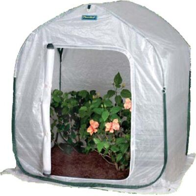 Flower House FHPH120 PlantHouse 2 Pop-Up Plant Greenhouses Cold Frames Garden