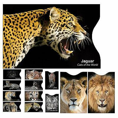 12 Pack RFID Anti Fraud Blocking Sleeve Contactless Credit Card Wallet Protector