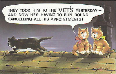 Vintage 1970's Bamforth COMIC Postcard (as new condition) Vet's yesterday #584