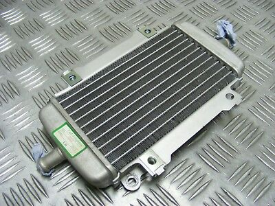 Look Genuine Vespa Gts300 Gts 300 Super 2014 Right Radiator Rad *free Uk Post*