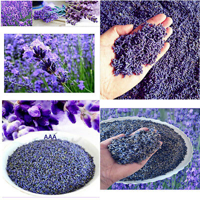 Dried lavender Extra Fragrant French Lavender