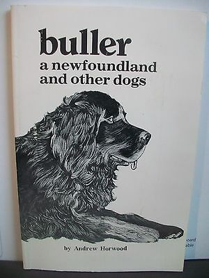 Buller A Newfoundland And Other Dogs,by Andrew Horwood,newfoundland Dog