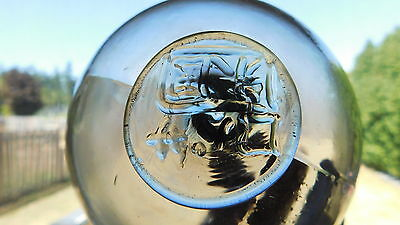 Vintage Genuine American Made Glass Float  Ropasa Marked Cod Float