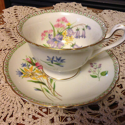 Dainty SHELLEY WILD FLOWERS china teacup and saucer set