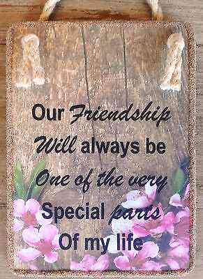 Handmade Hanging Plaque * OUR FRIENDSHIP WILL ALWAYS BE* Inspirational Friend