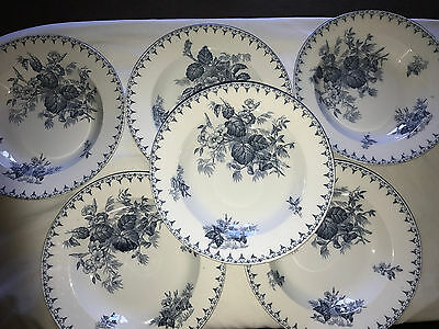 6 Assiettes Creuses Sarreguemines Decor Flore U&c