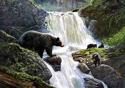 """Waterfall Bear HD Canvas Print 16""""x24"""" Home Decor Painting Wall Art Picture"""