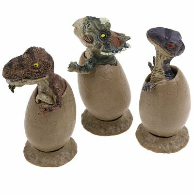 3Pcs/Set Dragon Baby Hatching from Egg Dinosaur Toy Action Mini Figure AU