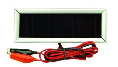 American Hunter Economy Solar Charger, 6-volt