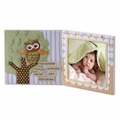 Roman, Inc. Learning to Fly Owl Photo Frame * Sacrament