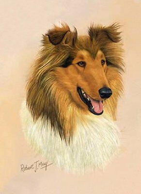 Collie Playing Cards - Art by Robert May