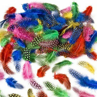 Speckled colored Craft Feathers Assorted colors Childre