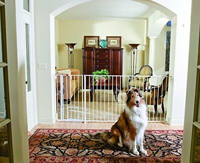 Carlson Maxi Extra Tall Pet Gate, Expands 51-59 Inches