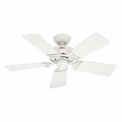 Hunter Fan Company 52065 Hudson 42-Inch Ceiling Fan wit