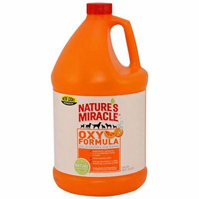 Nature's Miracle Stain & Odor Remover, Orange Oxy, Gall