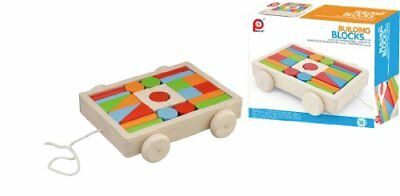 PINTOY car with building blocks (bright color) 12507 (j