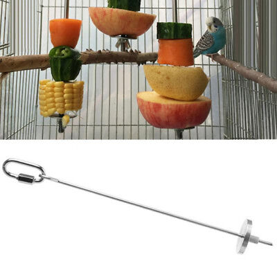 Large Parrot Fruit Skewer | Stainless Steel Bird Treat Spear Feeder Hanging