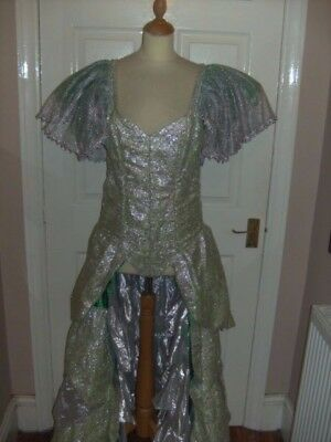 Pantomime Fairy Godmother Cinderella Costume By Midland Costumes Theatre Dress