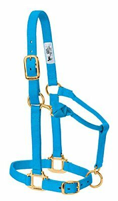 "WEAVER LEATHER 35-7035-HB 1"" Avg Blu Snap Halter"