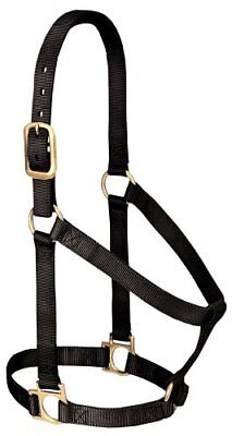 Weaver Leather Basic Non-Adjustable Nylon Horse Halter,