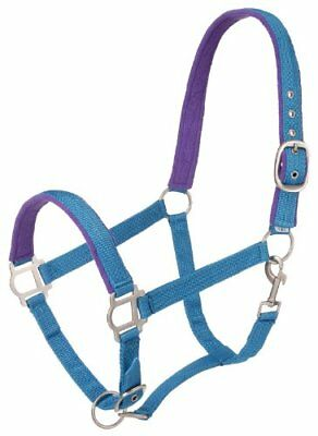 Tough 1 Nylon Padded Halter with Satin Hardware, Turquo
