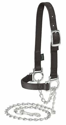 Weaver Leather Nylon Adjustable Sheep Halter with Chain